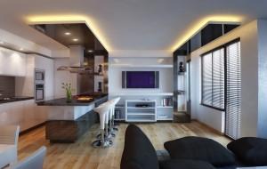 Дневна част, кухня и TV зона